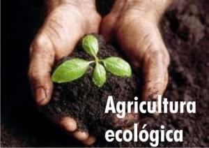 agriculturaecologica